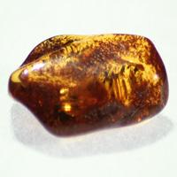Ambre (pierres roulées )-0